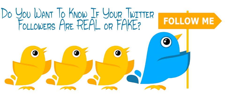 Do you want to know if your Twitter followers are real or fake?