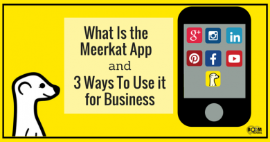 What Is the Meerkat App and 3 Ways to use it for business - Kim Garst