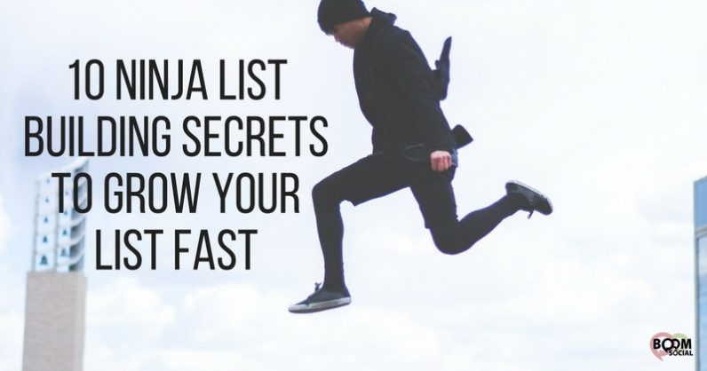 10 Ninja List Building Secrets To Grow Your List FAST