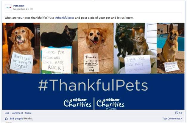 thankfulpets