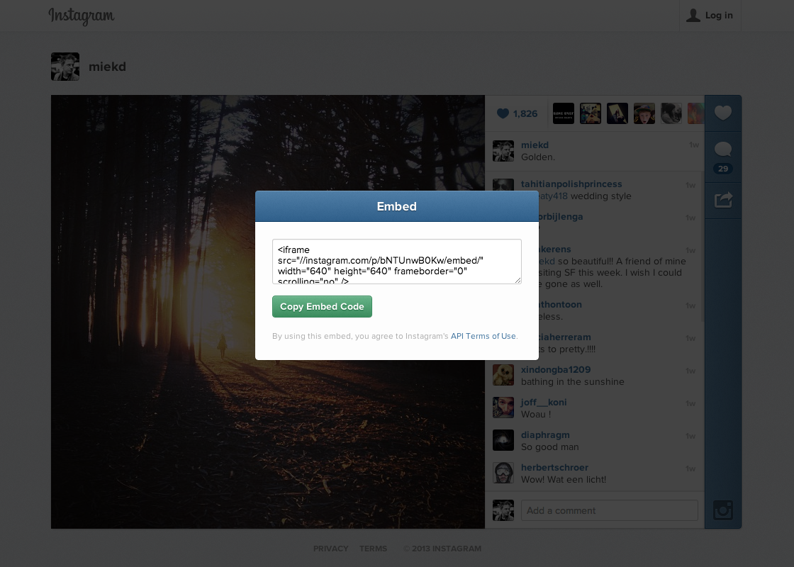 Embed Instagram Photos on Blog