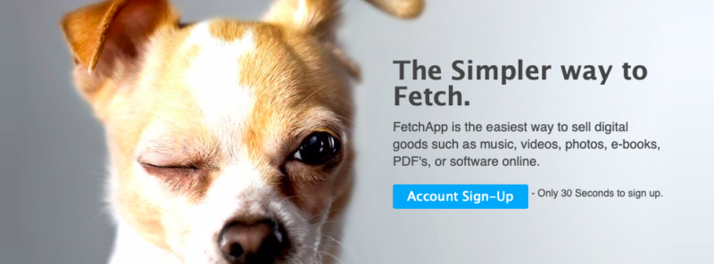 Fetch_Your-Digital-Product-Online