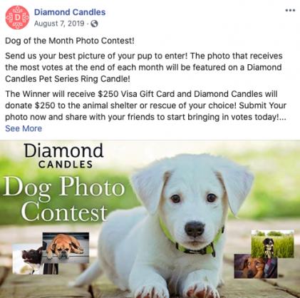 submit-photo-contest